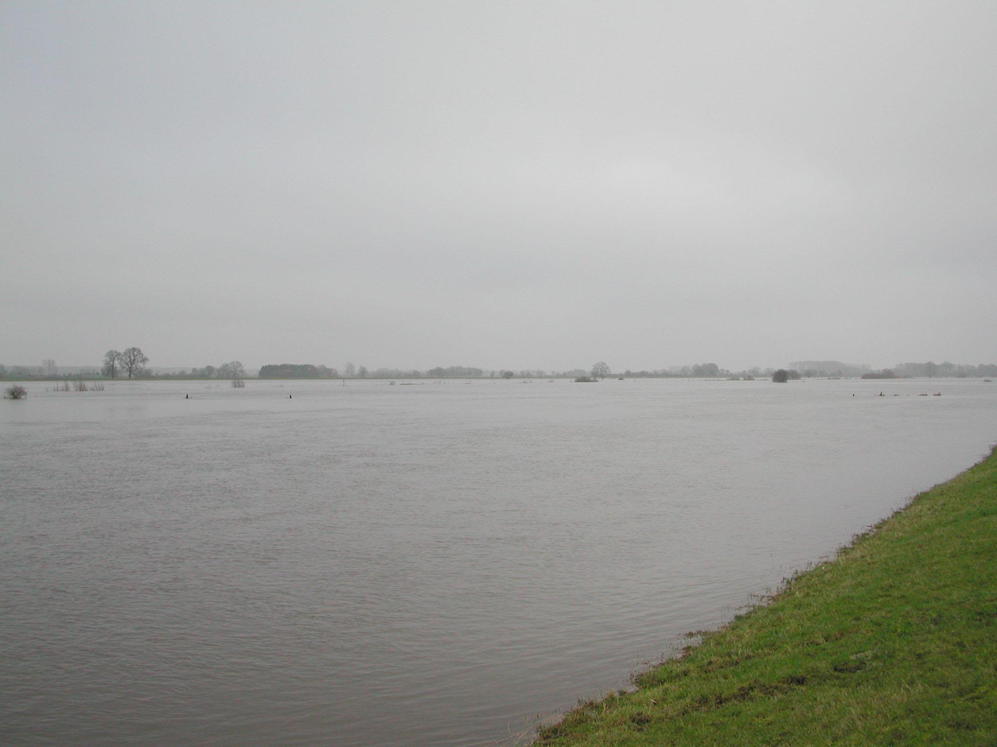 Manchmal wird aus der kleinen Aller ein großer Fluss / Bild: Klaus Jarchow